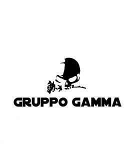 Gruppo Gamma